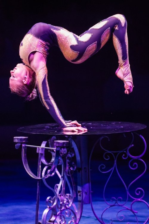 Акробатическое шоу