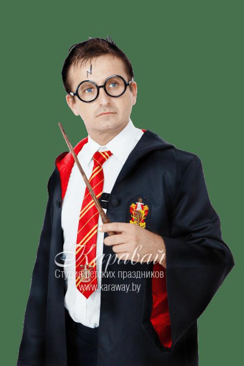 Аниматор Гарри Потер